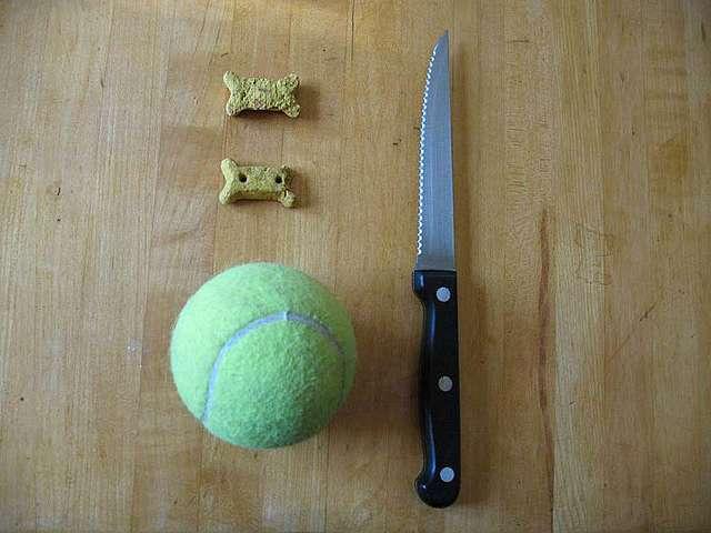 Игрушки для щенков и собак своими руками