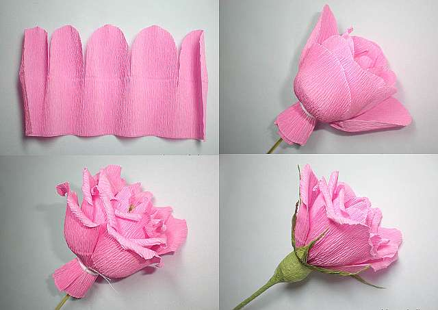 Мастер класс розы из крепированная бумаги