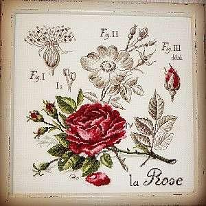 Схемы для вышивки восхитительных роз крестом