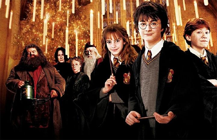 Гарри Поттер с друзьями